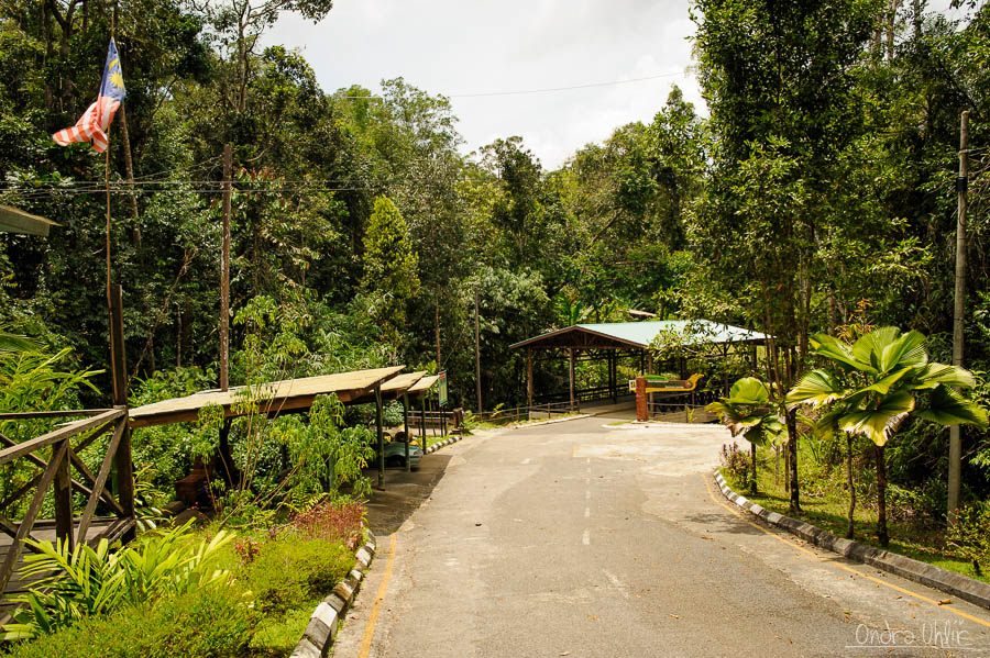 Semmengoh wildlife center