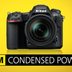 Nikon D500 a Sigma 50-100/1.8