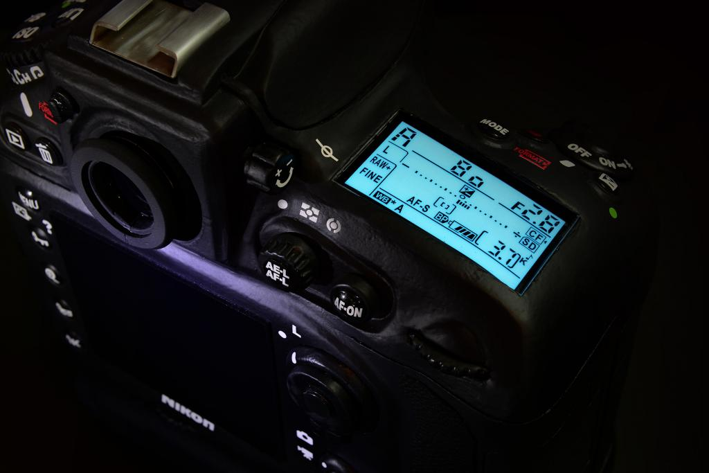 Stavový displej Nikonu D800E